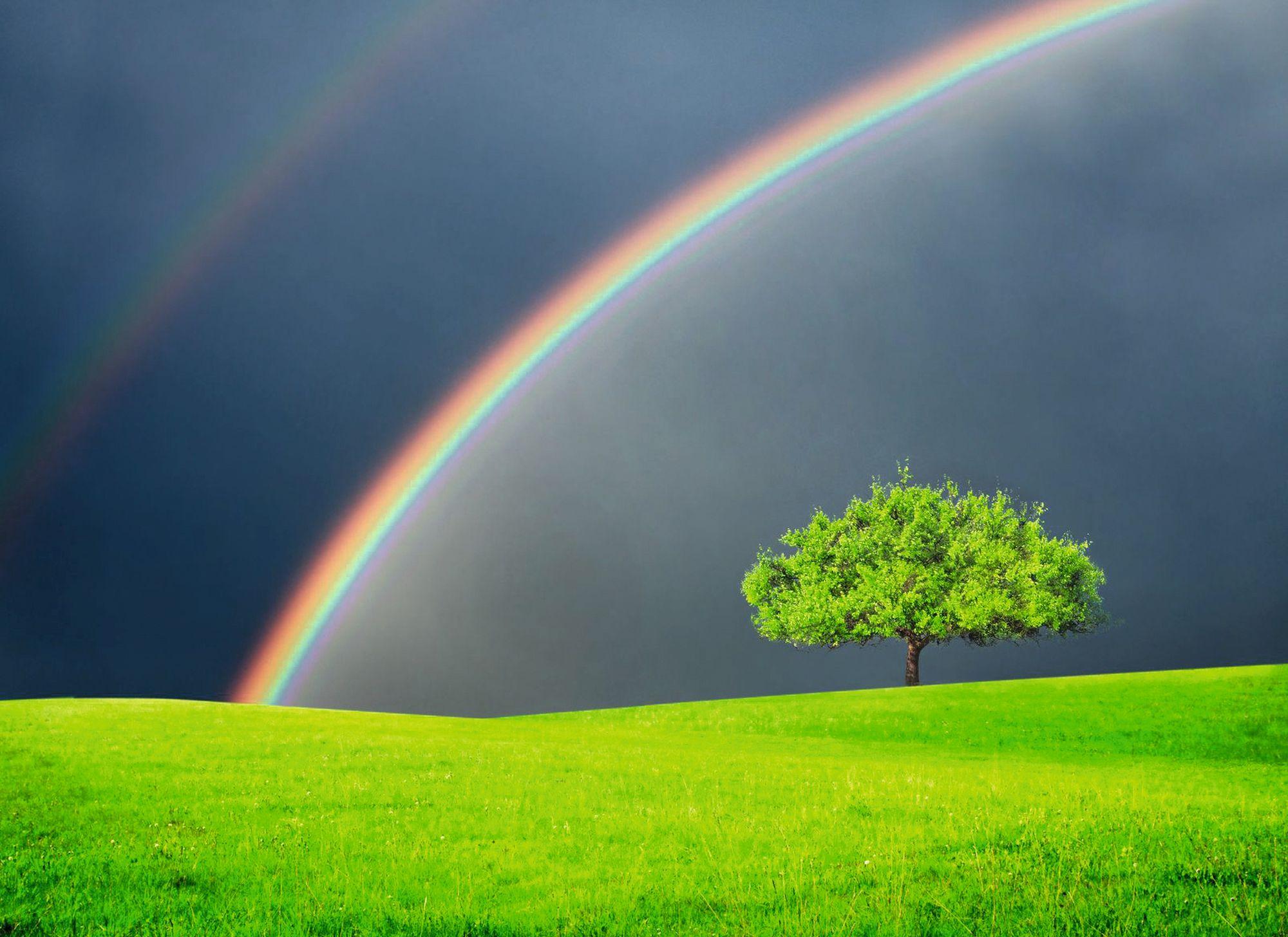 Unser Regenbogen - Bestattungshaus Regenbogen